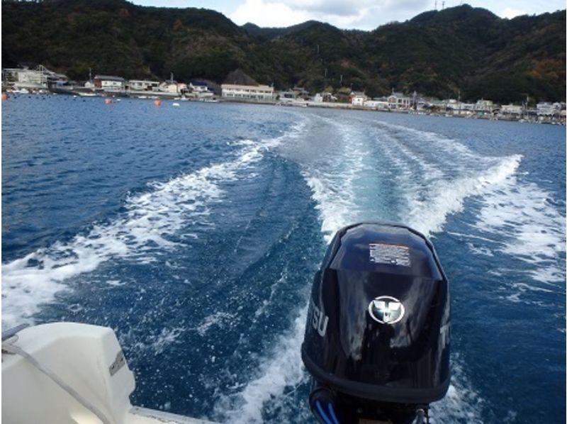 【愛媛・南宇和郡】由良半島の海の豊かな自然を満喫!2タンクボートダイビングの紹介画像