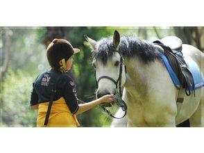 ライディングクラブウインズ(HORSE RIDING CLUB WINDS)の画像