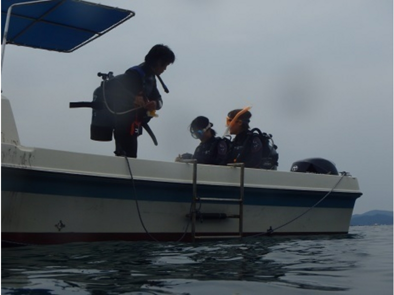 【愛媛・南宇和郡】宇和島・愛南の海をとことん堪能!3タンクダイビングの紹介画像
