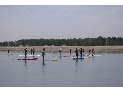 [Aichi Chita] in your favorite board and paddle! SUP rental courseの紹介画像