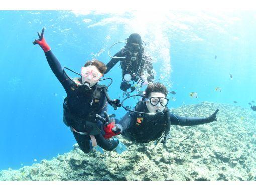 【一組完全預定,當天預定即可! ] 概率最高!藍洞潛水!免費照片視頻和餵食の紹介画像
