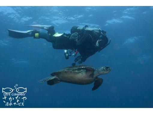 【静岡・伊豆】ダイビングとサカナ好き集まれ!海洋公園でダイビング【ファンダイビング】
