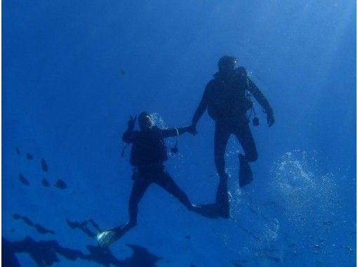 【静岡・富戸】ダイビング好きさん集まれ!ガイド付きファンダイビング【ビーチ・ボート】