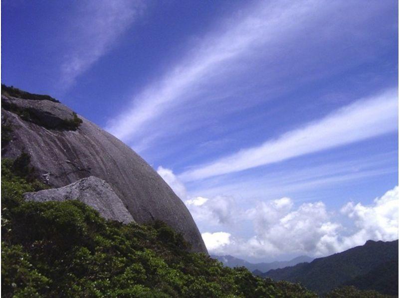 【鹿児島・屋久島】清浄な山上世界へ!1日トレッキングコースの紹介画像