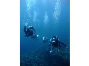 マリンサポート・ブルーナ(Marine Support Bluena)の画像