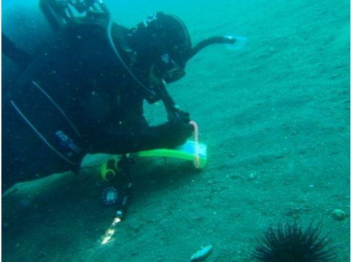 【埼玉・草加】初めての方にオススメ!体験ダイビング(プール・海洋)