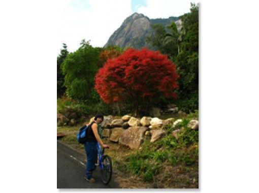 【鹿児島・屋久島】ブラブラと散歩気分を楽しむポタリングコース