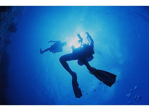 【富山・滑川】24時間眠らない海!富山湾で時間が選べるファンダイビング
