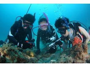 RELAX diving service (リラックス・ダイビング・サービス)の画像
