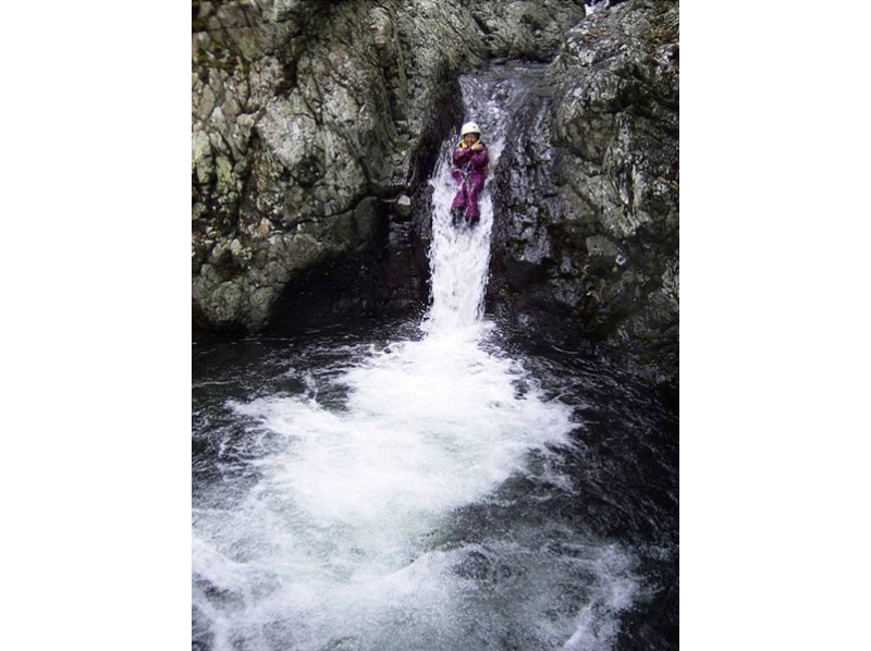 【鹿児島・屋久島】スポーツ要素だけでなく、じっくり自然と向き合える沢登りを体験(半日ツアー)の紹介画像