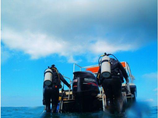 【沖縄・名護発】ブセナdeボートファンダイビング(1ダイブ)