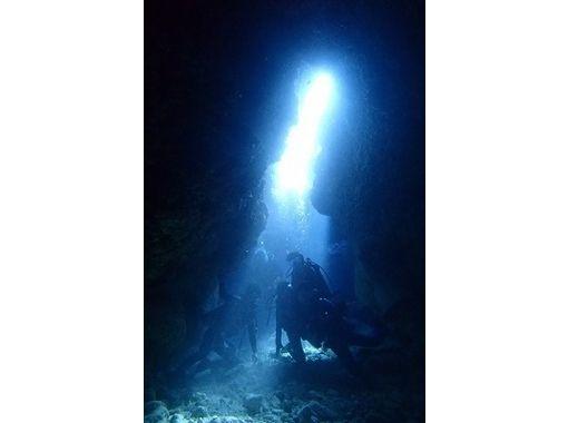 【愛知・豊田】海の中を覗いてみよう!体験ダイビング【未経験者・初心者歓迎 ライセンス不要】