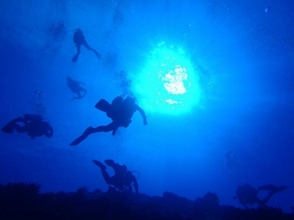 Diving Shop Blue blue(ブルーブルー)の画像