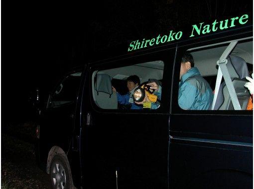 【北海道・知床】エゾシカやキタキツネを見に行こう!夜の動物ウォッチング!ご家族で楽しめる!6才~OK