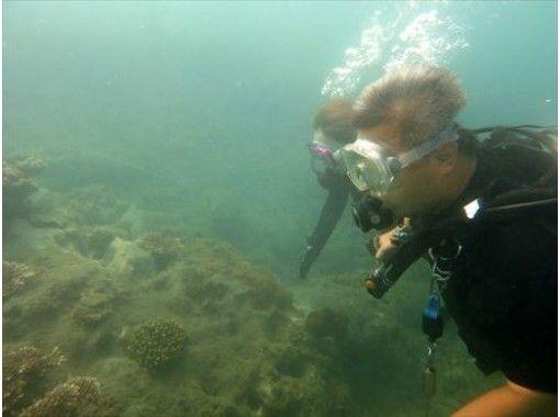 [Shikoku ・ Kochi] A day trip experience where you can enjoy the beautiful sea Diving~!の紹介画像