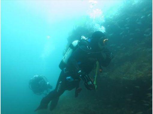 【四国・室戸】独特の人工漁礁ビーチダイビングツアー【日帰り・2ボート】