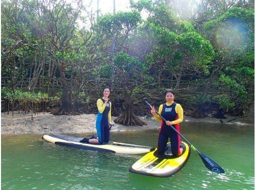 【沖縄・本島】冒険家気分で穴場スポットを探検!SUP体験(120分マングローブリバークルーズ)
