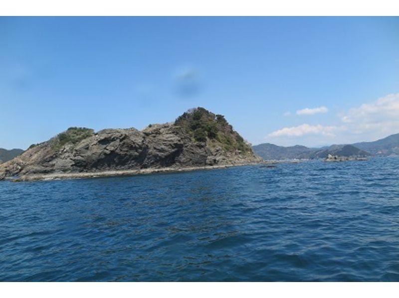 【愛媛・南宇和郡】水中世界を覗いてみよう!体験ダイビングの紹介画像