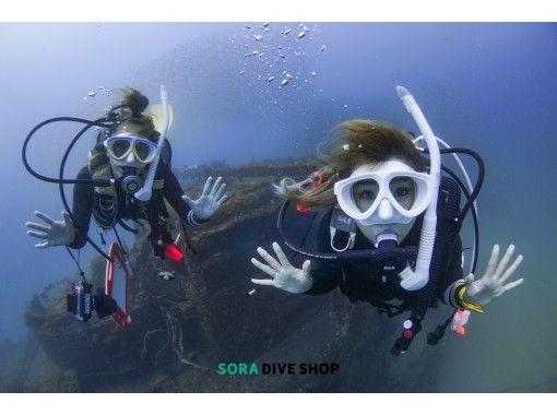 【大阪発・和歌山】ライセンス不要!和歌山の海で綺麗な魚を間近で見よう!体験ダイビングコース
