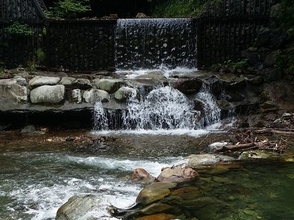奥秩父源流中津川渓流釣場の画像
