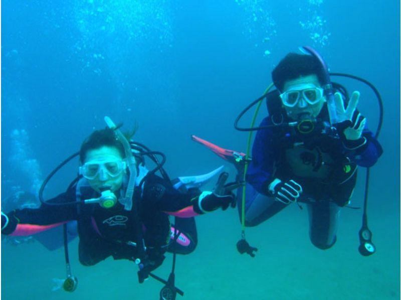 【静岡・伊豆】神秘的な海で浮遊感を体感!ファンダイビングの紹介画像
