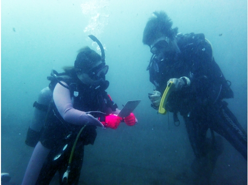 [Nagoya] PADI e-Learning Open Water Diver [Getting licenses] Dolphin courseの紹介画像