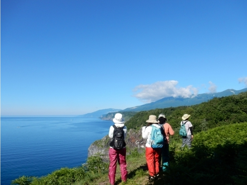 【Hokkaido · Shiretoko】 Look at the cliff and the sea! Introduction image of Shiretoko Forest walk