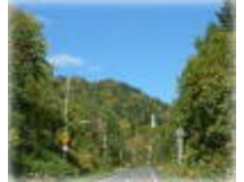 【北海道・名寄】マウンテンバイクで北海道の大自然を散策! ★4400円コース★の紹介画像