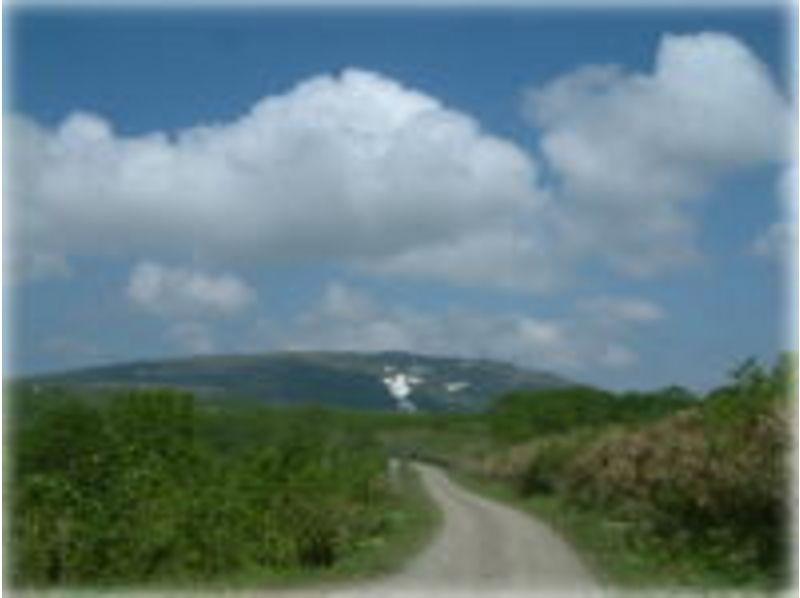 【北海道・名寄】マウンテンバイクで北海道の大自然を散策! ★7000円コース★の紹介画像