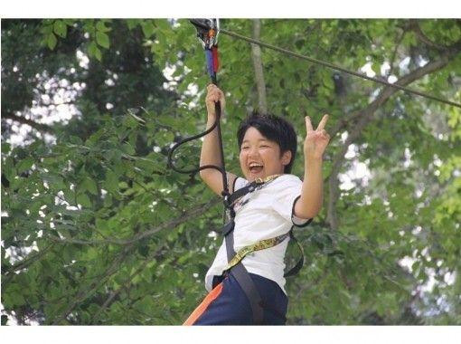 【Niigata · Echigo Yuzawa】 Feeling refreshing! Forest Adventure (Adventure Course Self Veilay)の紹介画像