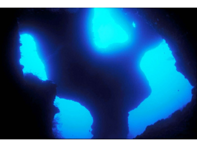 【沖縄/宮古島】伊良部の海でボートファンダイビングの紹介画像