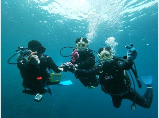 「HIS Super Summer Sale Now」【导览记录第一,出发概率第一,舒适设施第一】体验蓝洞船潜水の紹介画像