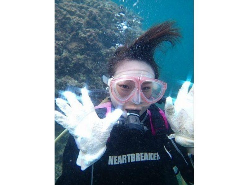 【沖縄・青の洞窟】大人気青の洞窟ダイビング! 初めての方でも大丈夫!の紹介画像