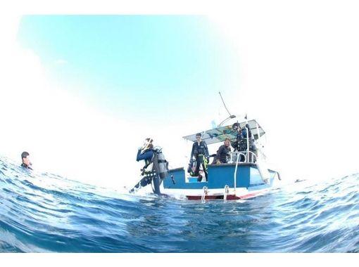【兵庫/神戸】海で体験ダイビングの紹介画像