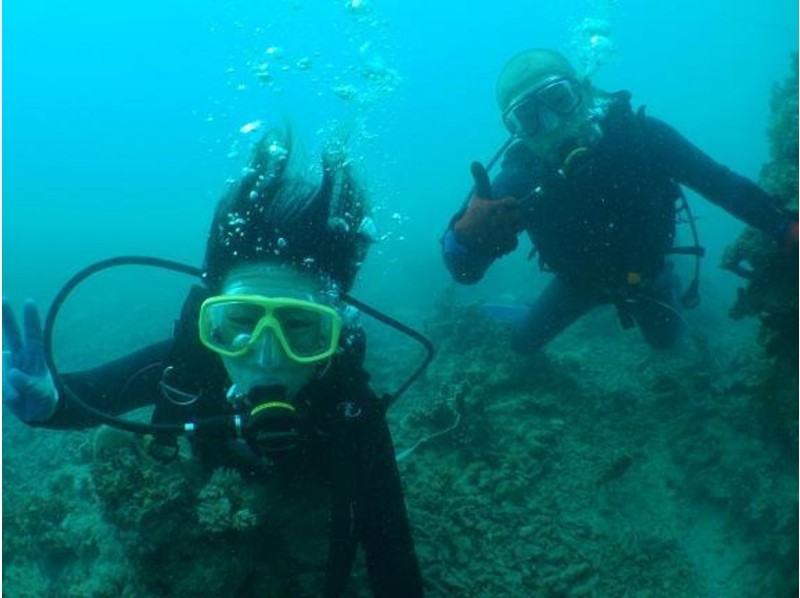 【沖縄・石垣島】ダイビングでしか味わえない感動!オープンダイバー講習の紹介画像