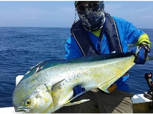 "[Shizuoka/ Numazu] Enjoy fishing at the ""charter tour"" at home! 15 years old ~ OK (up to 10 people)の紹介画像"