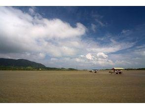 西表島ツアーガイドカラカラ(karakara)の画像