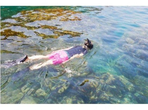 【柏崎・福浦】足元の海はまるで水族館!絶景の青海川SUPの紹介画像