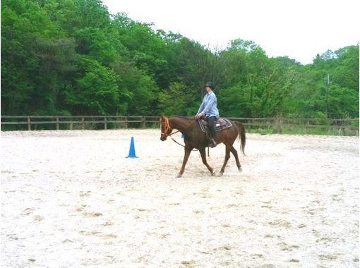 【 京都 ·船井】即使是初学者也可以享受直到快进! 骑马徒步课(30分钟)の紹介画像
