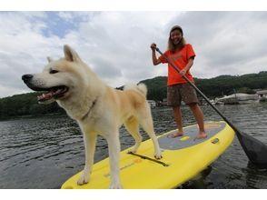 木崎湖モダンボートの画像