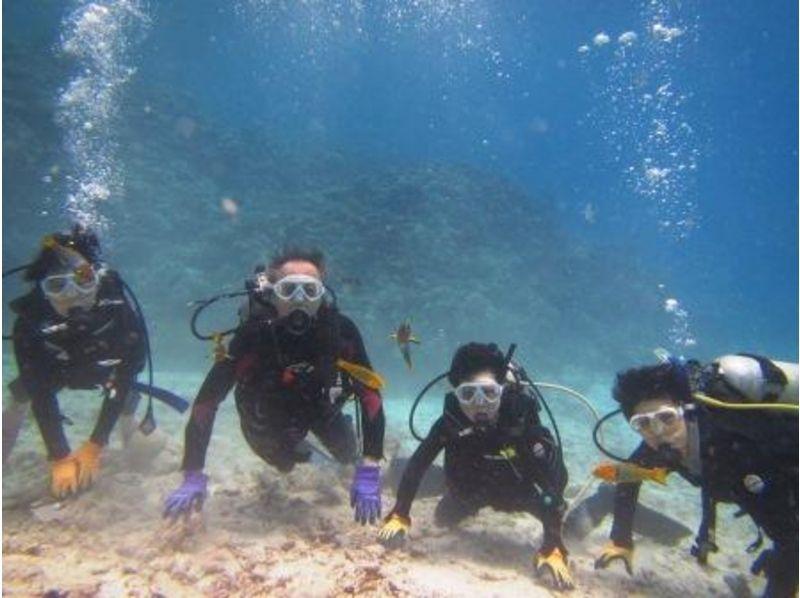 【沖縄・本部】水中写真プレゼント!本島北部★体験ダイビング!!の紹介画像