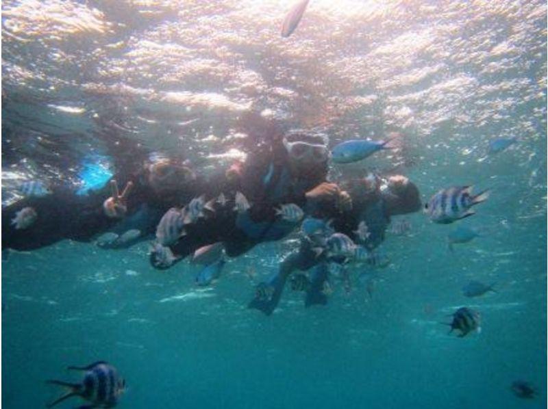 【沖縄・真栄田岬】沖縄の海を楽しむ!青の洞窟★シュノーケル!!の紹介画像