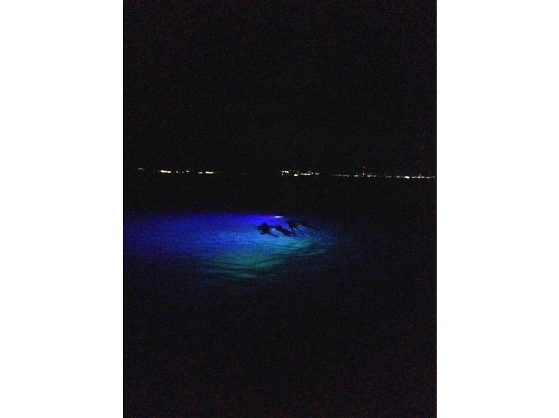 【沖縄・石垣島】星空ナイトヒーリング♪シュノーケリング・ナイトツアーの紹介画像