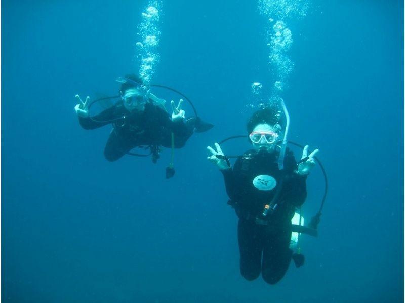 【沖縄・石垣島】石垣の海を堪能!マンタシュノーケリング&体験ダイビング♪(1日コース)の紹介画像