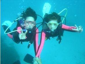 沖縄ダイビングサービス あいる・ぷまんどぅの画像