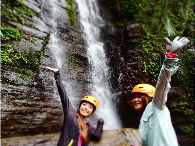 【沖縄・西表島】秘境の中の滝を目指す!秘境の沢「ゲーダの滝」コース(半日 AM・PM 3時間)の紹介画像