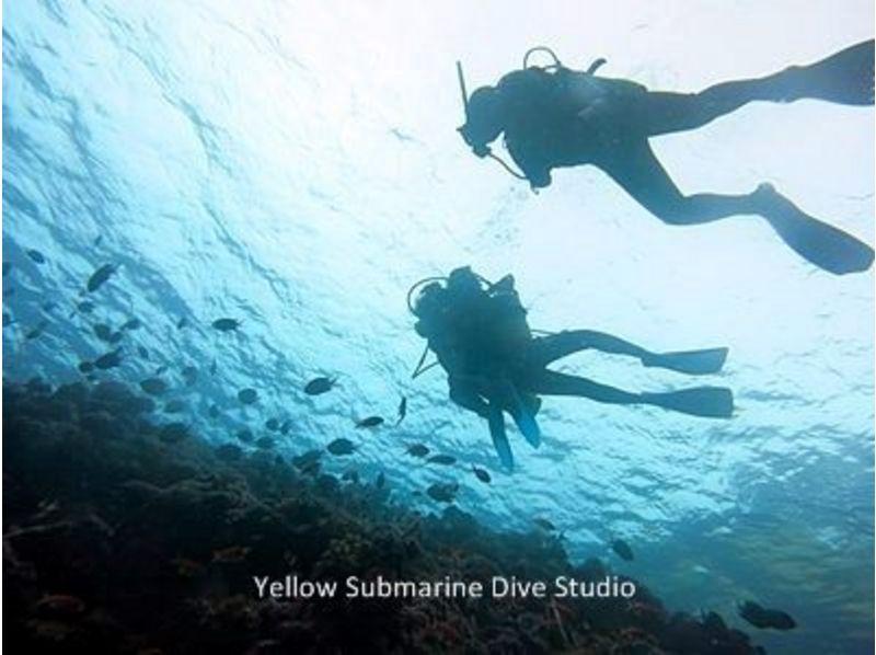 【沖縄・石垣島】体験ダイビング(2ダイブ:1日コース)の紹介画像