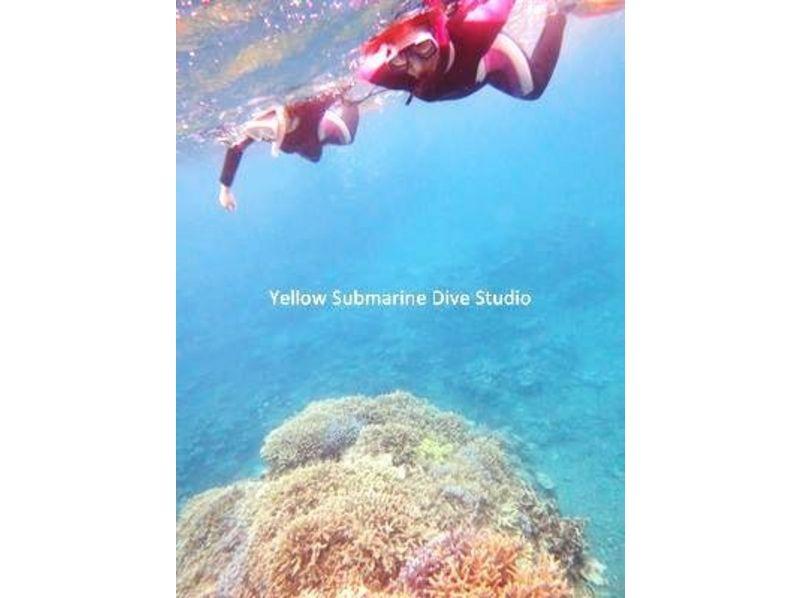 【沖縄・石垣島】マンタと一緒泳ごう!シュノーケリング体験(マンタシュノーケリング1本込)の紹介画像