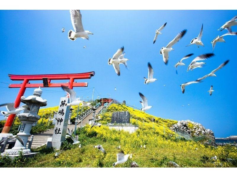 【青森・八戸】みちのく潮風トレイルツアー(蕪島~種差)【三陸復興国立公園】の紹介画像