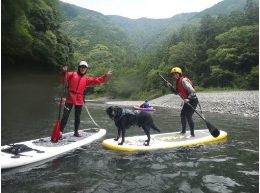 【浜松・気田川】初めてでも安心のリバーSUP体験スクール(1日コース)の紹介画像